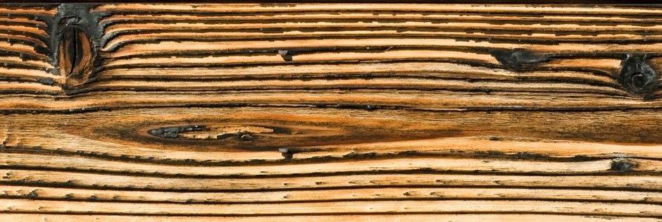 Holzbau Irsara